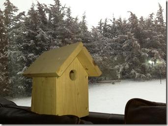 Birdhouse 1